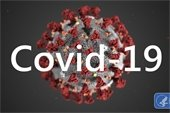 """""""COVID-19"""" - written over a picture of the virus cell"""