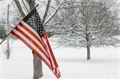 American Flag with winter background - snow & bare, snow-covered trees