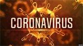 """Coronavirus"" over pic of virus cell"